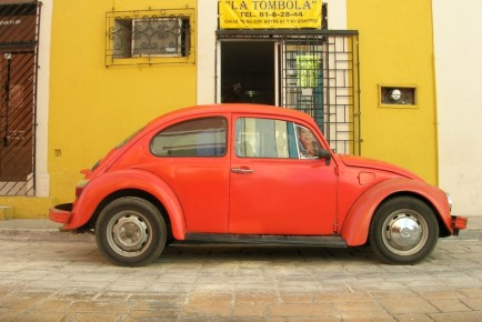 beetle_campeche_orange_350702_h