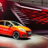 Peugeot (2)