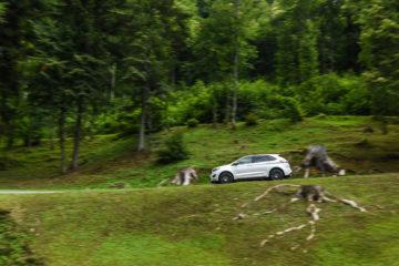 Ford Edge slovenska predstavitev_9