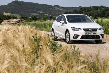 Seat Ibiza (6)