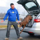 Prevoz psov in varnost AMZS Vransko (1)
