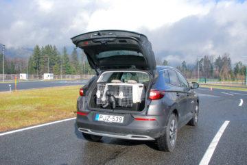 Prevoz psov in varnost AMZS Vransko (4)